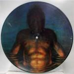 Tool - Cesaro Summability - Picture Disc Vinyl - 12 inch